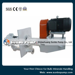 Ce Proved Complete Vertical Slurry Pump Set with Motor