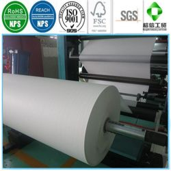 Waterproof PE Laminated Paper Rolls for Cups