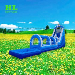 Inflatable Customized Buler Style Dolphin Water Slide with Pool