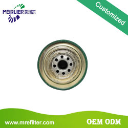 Truck Filter Factory Types of Fuel Filter for Mack 483GB441