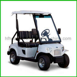 Company 2 Seats Electric Golf Shuttle Buggy Solar Ed Cart