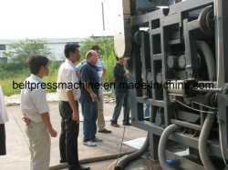 Filter Press for Mineral Powder Dewatering with 20 Years experience