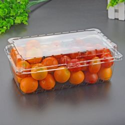 Transparent Pet PVC PP Box with Hinged Lid Disposable Packing Fruits Container Clamshell Box