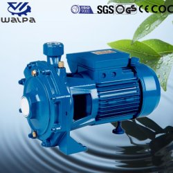 High Flow Centrifugal Abrasion Resistant Slurry Pump with Brass Impeller