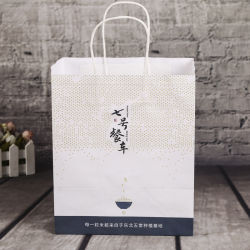 Professional Customized Paper Shopping Bag for Packaging, High Quality Wholesales Coated Luxury Paper Gift Shopping Bag with Logo Printed