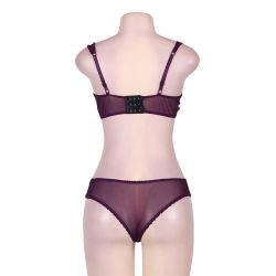 in Stock Naughty Purple Boudoir Net Sexy Bra Panty Set