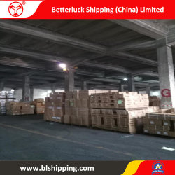 From China to Kazakhstan Aktau Container Sea Land Transportation