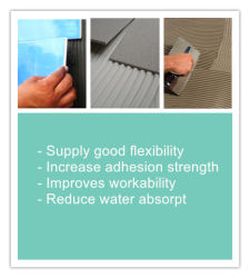 Redispersible Polymer Powder Rdp for Skim Coat