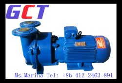 Vacuum Pump Mineral Slurry Dewatering Vacuum Ceramic Disc Filter P160/16c Spare Part