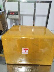 International Cargo Freight Forwarder Logistics Services