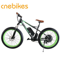 2018 New Model 48V 1000W Electric Fat Tire Bike