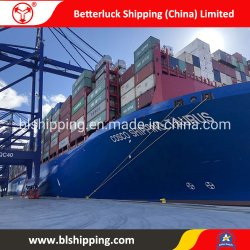 From China to Russia Vsevolozhsk Container Sea Freight Land Transportation