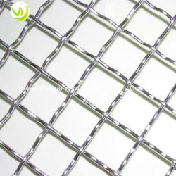 Stainless Steel Galvanized Crimped Wire Mesh /Mining Crimped Wire Mesh