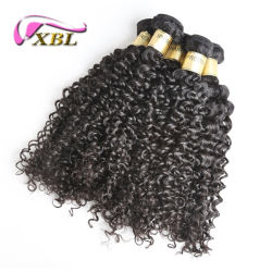 Xbl Factory Wholesale Price Full Cuticle Mink Hair Curly Hair