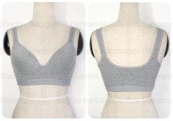 Bralette/Panty/Sports Bra/ Genie Bra/Babydoll Underwear/Push up Bra