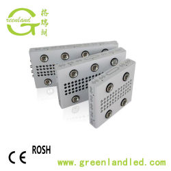 High quality Meanwell 900W COB LED Grow Lighting with Full Spectrum for Greenhouse Plant
