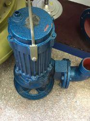Submersible Slurry Pump with Agitator