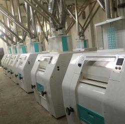 Most Popular Maize Flour Milling Machine/Maize Milling Plant