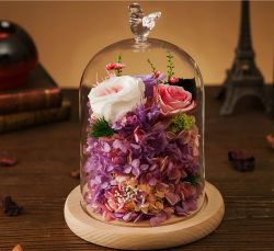 Cheap Eternal Fresh Natural Preserved Flowers Rose in Glass as Gift