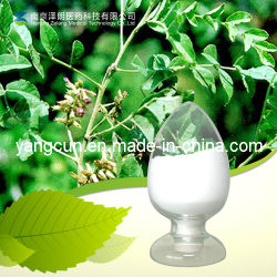 Factory Supply Natural Glycyrrhizic Acid Ammonium Salt