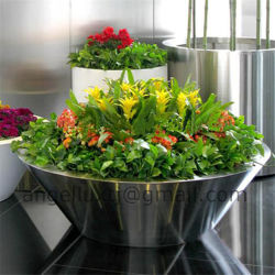 Large Stainless Steel Plant and Flower Pot Per Piece Price for Landscape Decoration