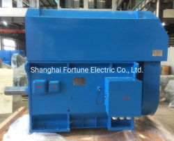 Big and Medium Size High Voltage Induction Asynchronous AC Electric Motor