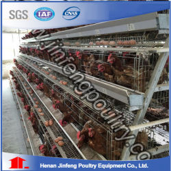 Jfa3120 Automaitc Poultry Equipment Layer Chicken Cage