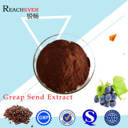 Healthy Care Grape Seed Powder for Food Additives
