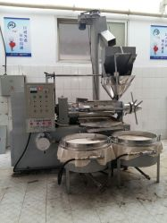 Cold Coconut Oil Press Machine for Commerical Use