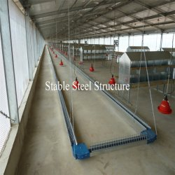 Direct From Factory Easy Assembly Steel Structure Chicken Farm Building