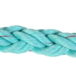 Colourful PE PP Nylon Polyester Danline Lead Rope