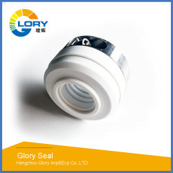10t 10r PTFE Mechanical Seal for Industrial Pump