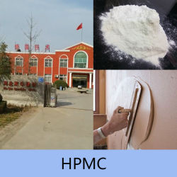HPMC Cellulose for Wall Putty Tylose Powder
