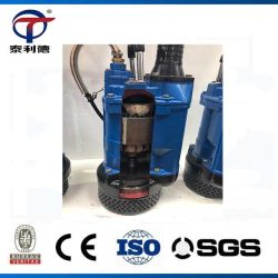 Vertical Electric High Chrome Alloy Large Solid Slurry Particle Submersible Dewatering Water Pump