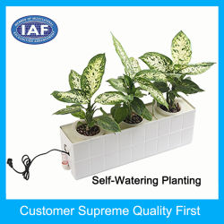Factory Supply Rectangular Hydroponics Plastic Flower Pot