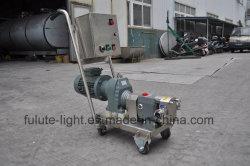 Stainless Steel Mango Puree Lobe Pump