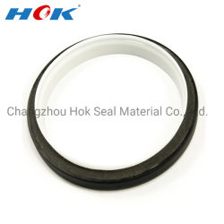 China Ptfe Oil Seal Ring, Ptfe Oil Seal Ring Manufacturers