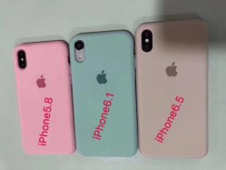 for iPhone Xs/iPhone Xr/iPhone Max Liquid Silicone Rubber Case with Pack