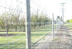 Factory Wholesale Galvanized Cattle Fence / Grassland Fence / Deer / Horse / Sheep