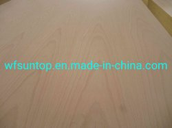 Good Quality and Price Beech Plywood Board AA Grade Beech Veneer Face and Back