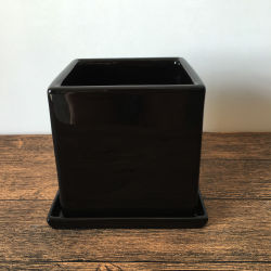 Black Indoor Decoration Square Ceramic Planter