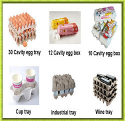 Full Automatic Egg Box Machines