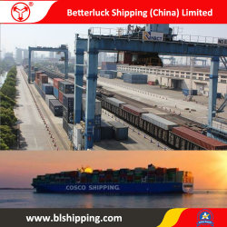 China Container Freight From Yiwu Ningbo, Container Freight From