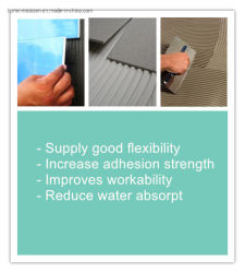 Redispersible Polymer Powder Rdp for Wall Putty