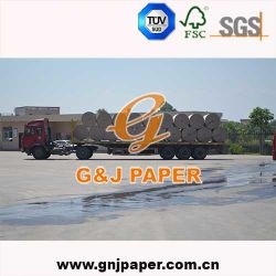 Top Quality Grade AA Kraft Liner Board Price in Excellent Wrapping