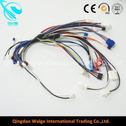 china computer wire harness, computer wire harness manufacturers Computer Control Module