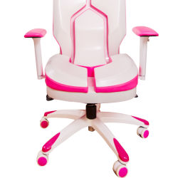 Beautiful Pink Computer Chair