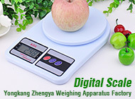 LCD Display Electronic Body Fat Scale with Strong Metal Base