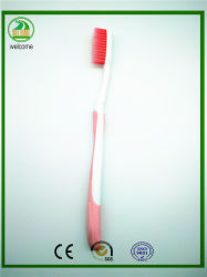 Give Free Plastic Tube Packing Toothbrush with Cap Shiny Card