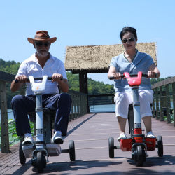 Recruit Electric Scooter Distributor in UK